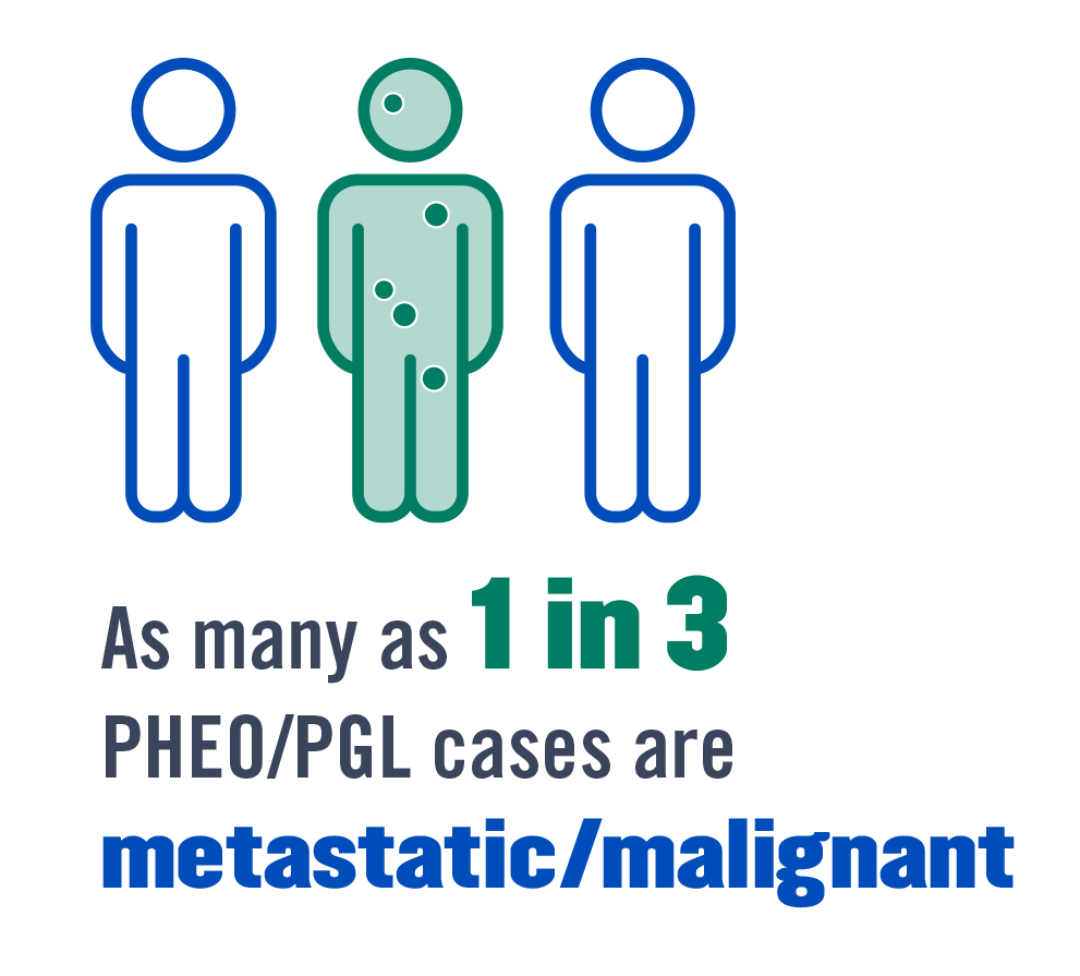 As many as 1 in 3 PHEO/PGL cases are metastatic/malignant.